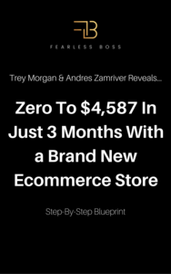 Thumbnail of Case Study Reveals Simple, But Super Profitable Ecommerce Success Method.