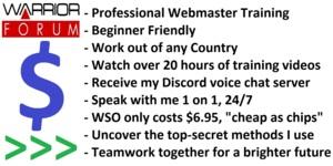 Thumbnail of [WSO] Professional Webmaster Training, Beginner Friendly..