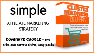Thumbnail of Cluster Madness Blueprint - Dominate Google with One Affiliate Site for Massive Sales.
