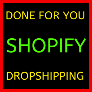 SHOPIFY DROPSHIPPING - DONE FOR YOU - (with USA supplier) -Let us Build you  an E-com Business