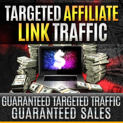 Thumbnail of [SOLO ADS] Targeted Affiliate Traffic - Get 4000+ Clicks - 800+ Optins - Sales Guaranteed!.