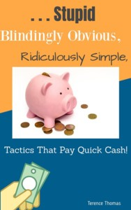 Thumbnail of Stupid, Blindingly Obvious, Ridiculously Simple Tactics That Pay Quick Cash.