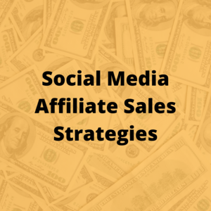 Thumbnail of Affiliate Marketing Mastery, List Building and Sales Generation With Free and Paid Traffic.