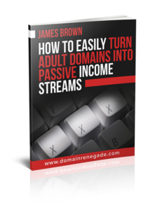 [NICHE MARKETING] How To Turn Expired Adult Domains Into Highly Lucrative Tube Sites! Thumbnail