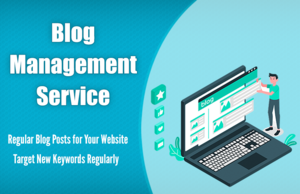 Blog Management Service - We will Write Weekly Blog Posts for Your Website Thumbnail