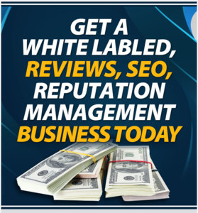 White Labeled Google Reviews Business Done For You Thumbnail